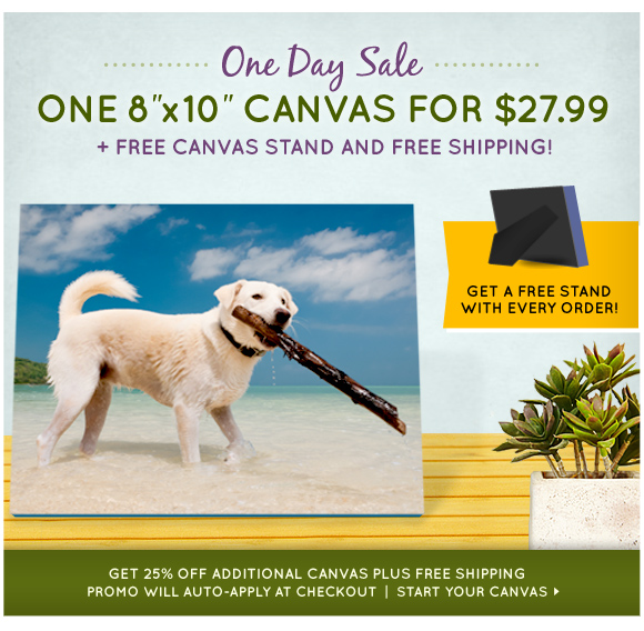 One Day Sale: 8x10 plus free canvas stand for $27.99